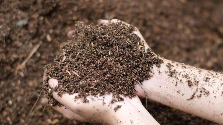 Bestil kompost
