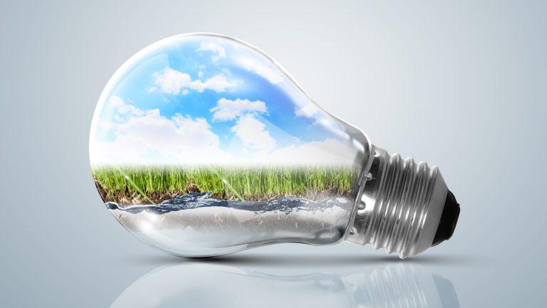 Har du brug for støtte til din grønne idé?